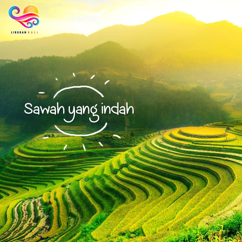 5 Alasan Mengapa Bali Selalu Menjadi Tujuan Wisata Favorit 3