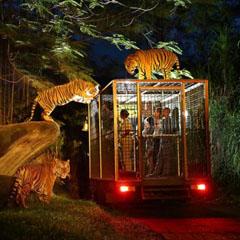 Tiket Taman Safari Bali Murah 2017