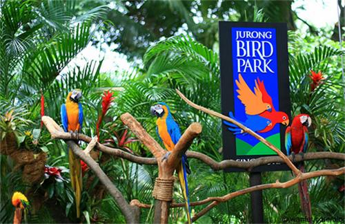 Bali bird park liburan bali 2