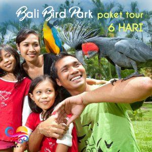 Bali Bird Park Paket tour 6 hari