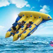 Flying fish2