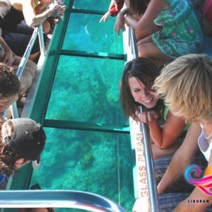 Glass bottom boat2