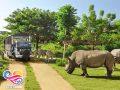 safariexplore2