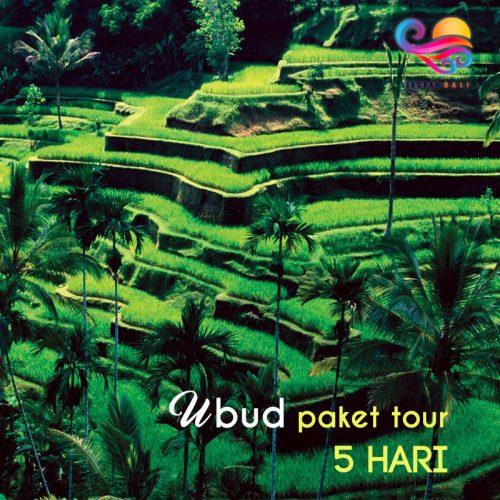 Paket Tour Liburan di Bali 5 Hari
